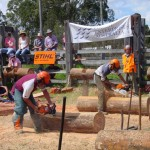Chainsaw racing 1042