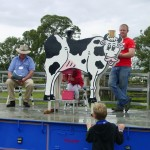 cow milking03620