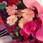 flowers03702