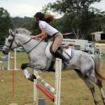 horse jump9010