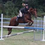 horse jump9025